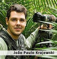 Image result for João Paulo Krajewski pic