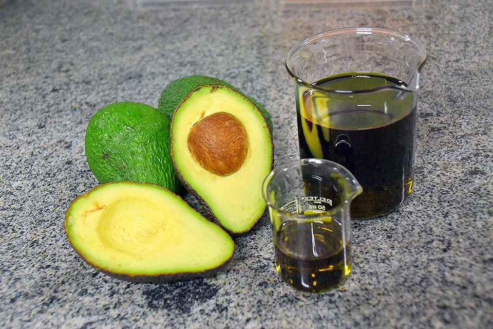 Azeite de Abacate