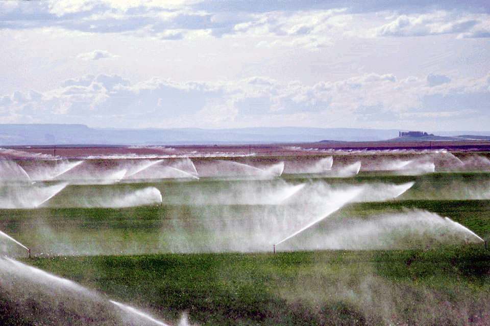 Foto: teraambiental.com.br