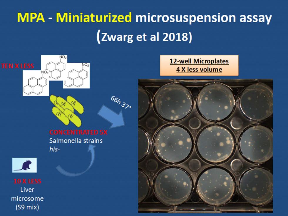 Esquema do teste de mutageniciade miniaturizado desenvolvido pelo grupo da FT