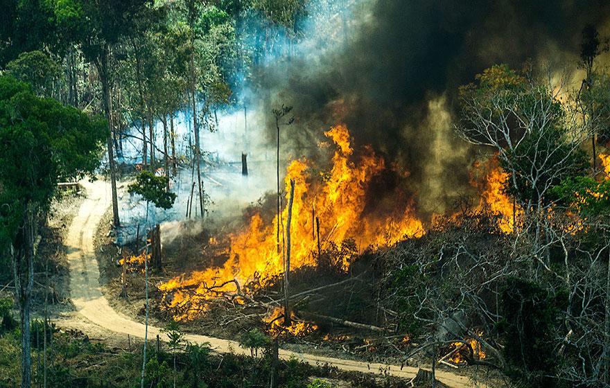 Queimada em Cujubim, em Rondônia   Foto: de Rogério Assis - Greenpeace
