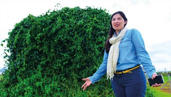 A arquiteta Denise Damas de Oliveira Morelli, autora da tese, ao lado de protótipo de alvenaria coberto por trepadeira