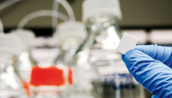 Plaqueta de sílica usada nos exames: adsorvendo em cerca de um minuto as substâncias presentes na pele