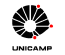Logo Unicamp