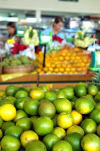 Laranjas Pera e tangerina Murcote expostas em mercado na região central de Campinas: cítricos são os mais importantes em termos de produção. (Foto: Antoninho Perri)