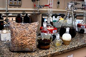 A semente de sucupira e as substâncias dela extraídas: pesquisas têm várias etapas