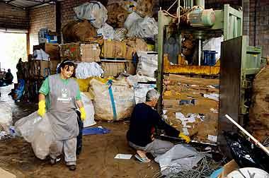 Cooperativa de reciclagem de lixo em Campinas: legislação é descumprida pela maioria das cidades do país  (Fotos: Antoninho Perri)